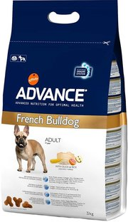 Advance Adult French Bulldog фото